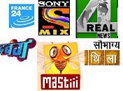 France24, MAStii, Sony Mix, 4Real News, Sobhagya Mithila, Dabangg TV Channels on DD Direct Plus