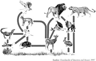Komponen Proses Asas Ekosistem