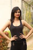 Zara Shah photos at Aithe 2 launch-thumbnail-9