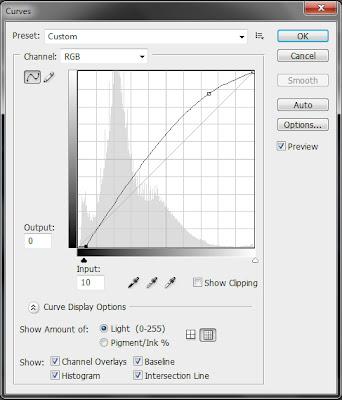 photoshop tutorials, tutorial photoshop, cctv, efek kamera, manipulasi foto, edit foto, kamera, curve