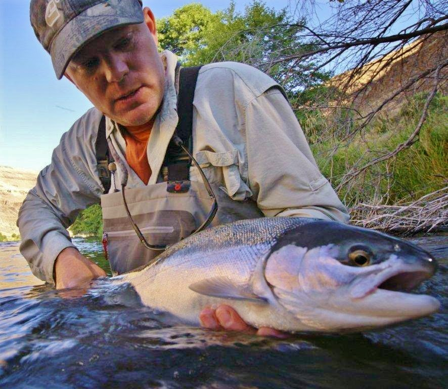 Steelhead with Water Time Outfitters