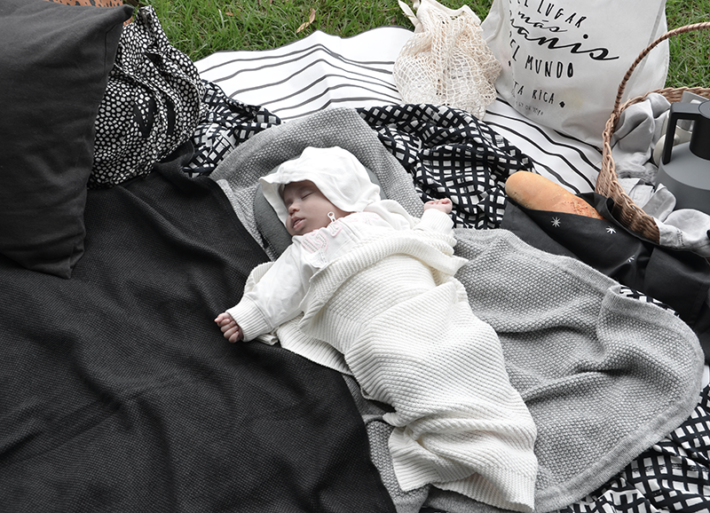 oybaby-picnic