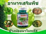 อาหารเสริมพืชช้างน้อยนาโนพลัส
