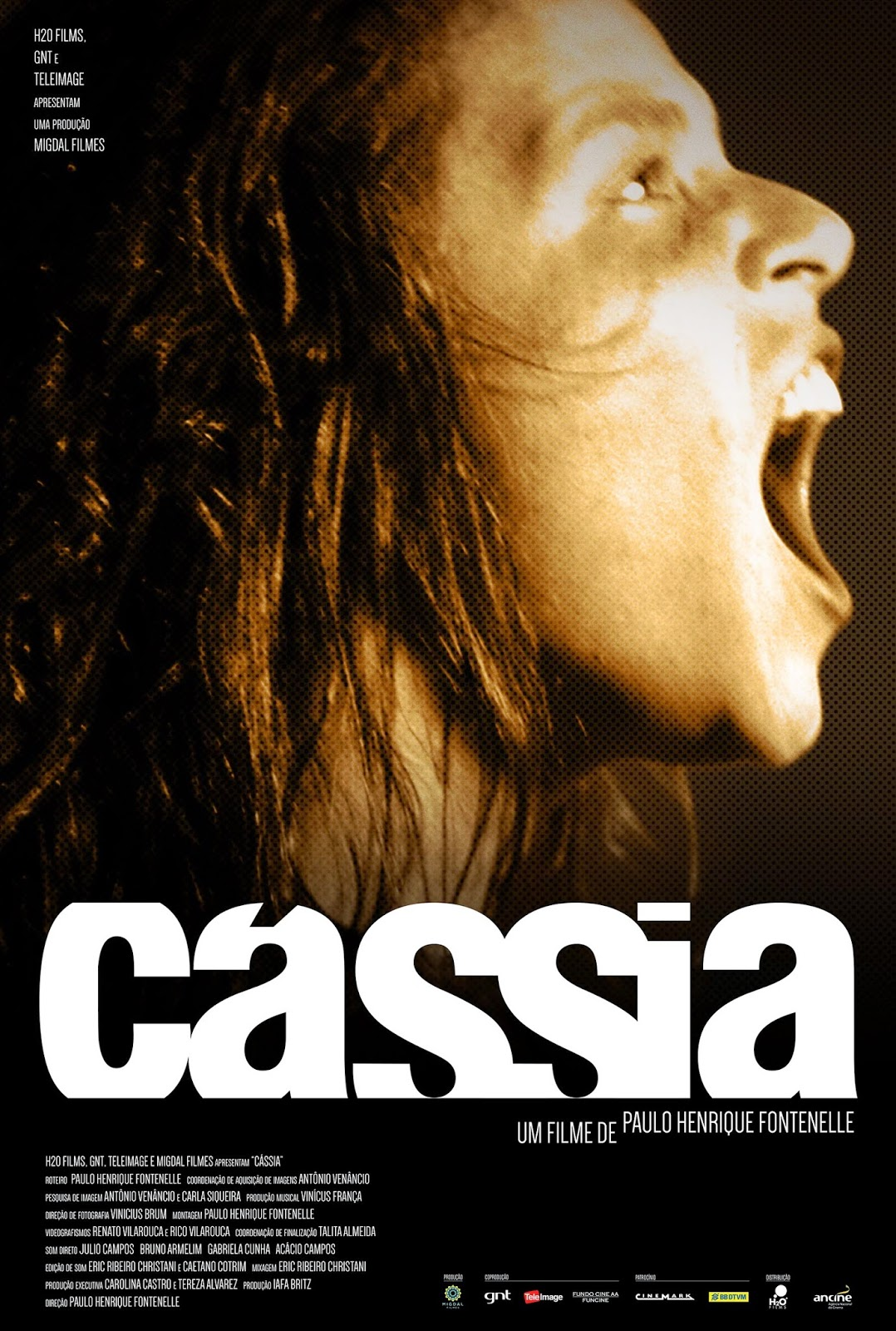 Download Filme Cássia Eller BDRip AVI + RMVB Nacional