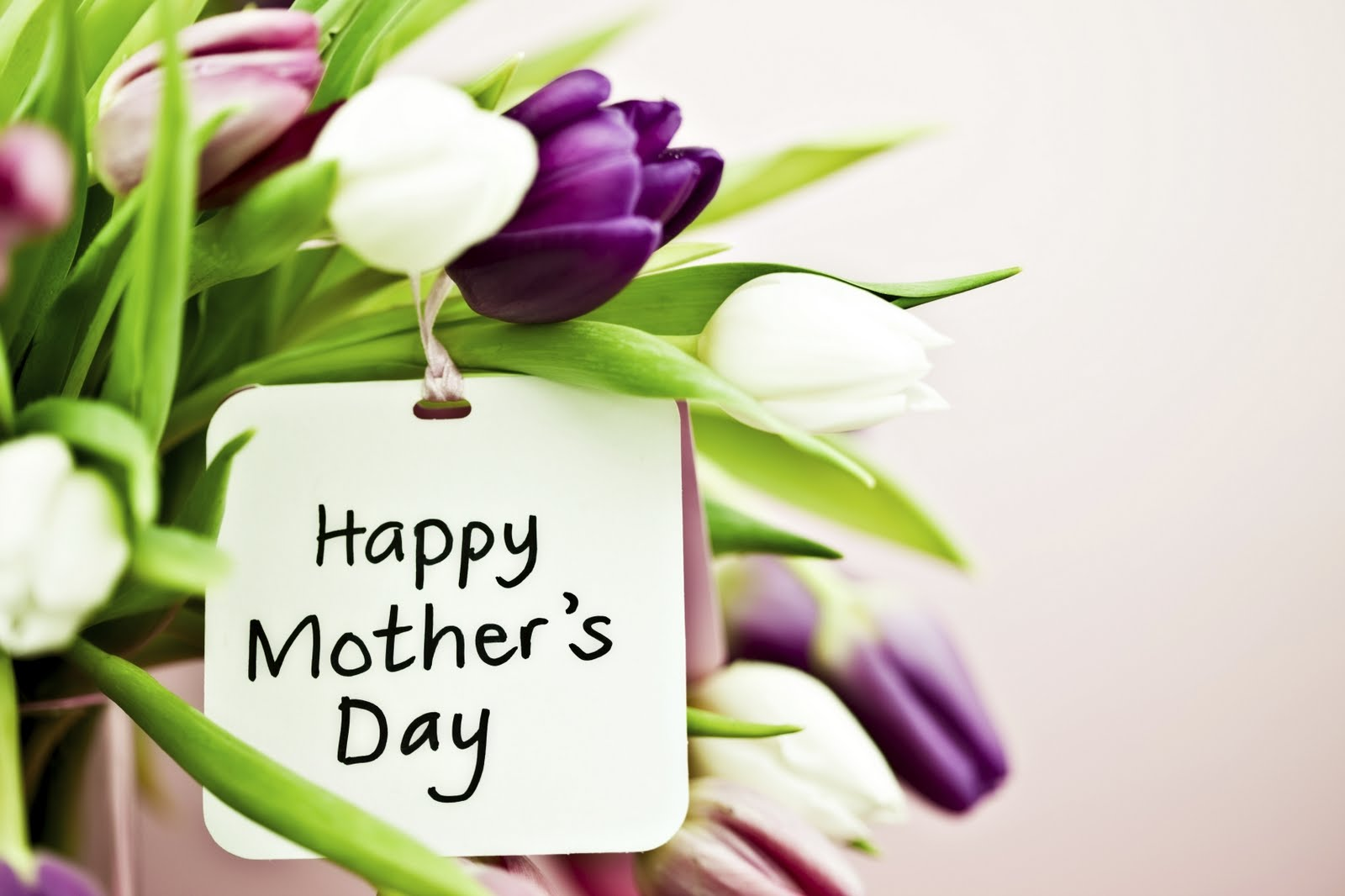 Mothers Day Hd Wallpapers 3d Card For Free Happy New Year 2014