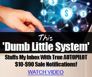 Dumb Little System