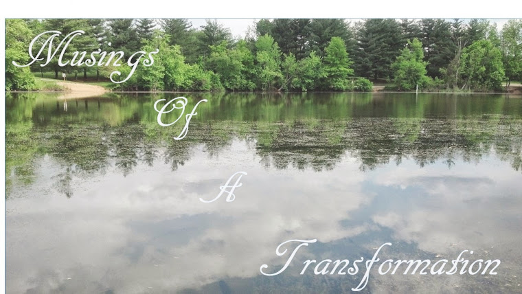 Musings of a Transformation