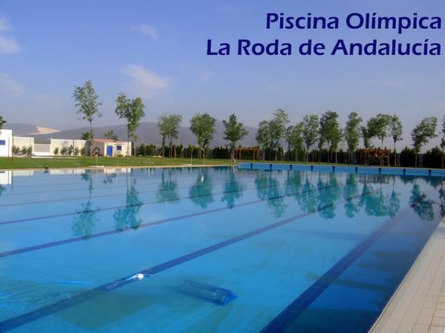 Fugas de agua piscina municipal la roda de andaluc a for Piscina olimpica madrid