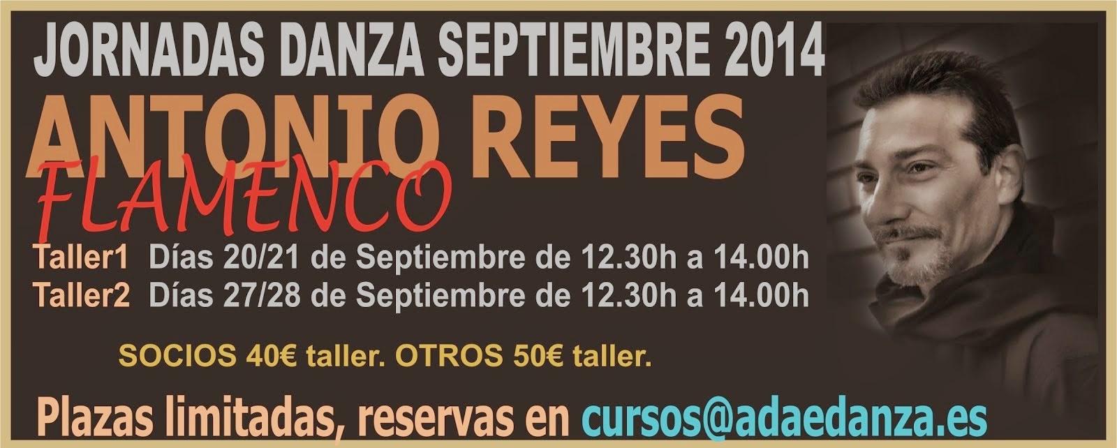 ANTONIO REYES - TALLER FLAMENCO.