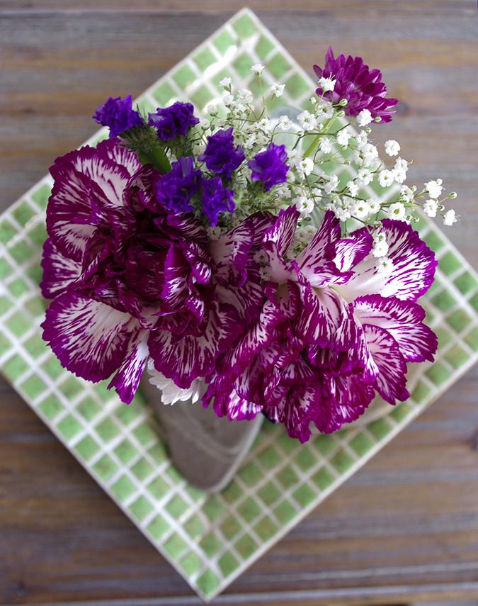 Spring Carnations