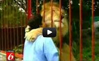 Απίστετο : Λιοντάρι αγκαλιάζει και φιλάει τη γυναίκα που το έσωσε (Video)