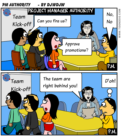 Project Manager Authority