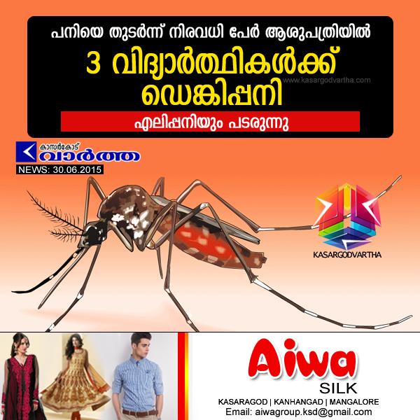 Kasaragod, Kerala, Fever, Kanhangad, hospital, Doctors, Treatment, 3 students hospitalized after dengue fever.