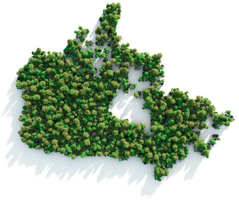 Ontario biodiversity strategy 2012
