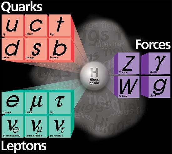 """Já temos """"um"""" Bóson de Higgs, segundo cientistas do LHC"""
