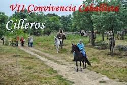VII CONVIVENCIA CABALLISTA