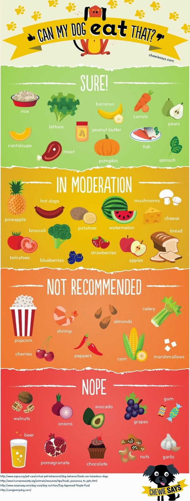 little holly s big world can my dog eat that this infographic