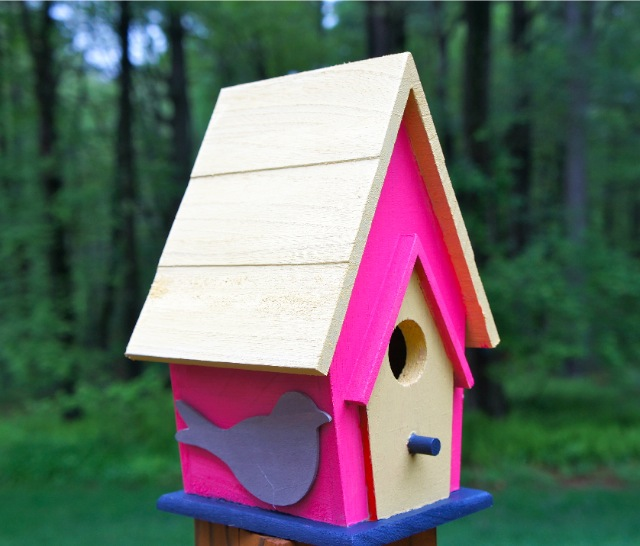 Home With Baxter Fun Birdhouse