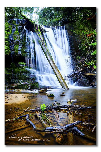 Lower Lilydale Falls by Kane