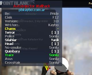 Point Blank Türkiye Kaybo Wallhack 3.0 Calısan Oyun Botu 2013 indir