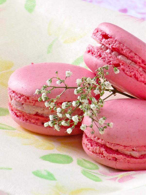 The inspiration for this macaron is from the book The Australian Women ...