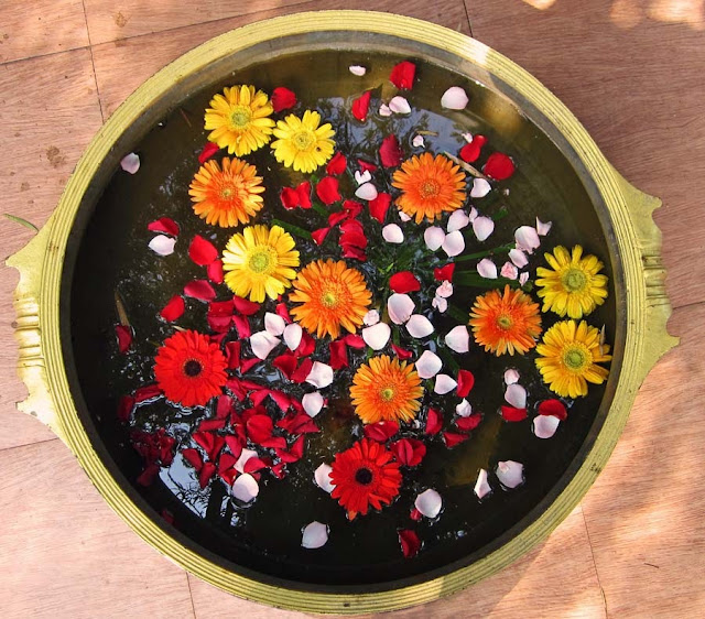 flower arrangement in a pot