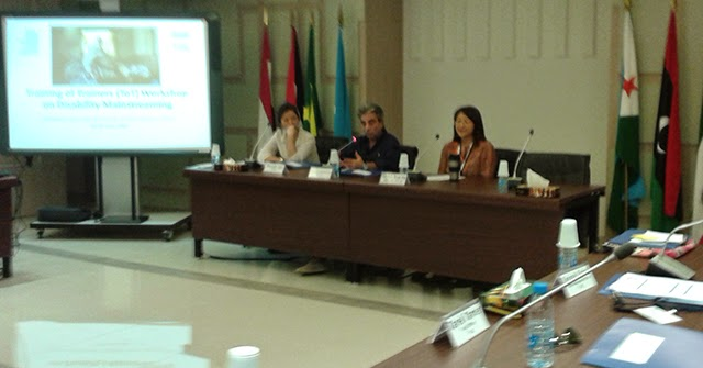 Lebanon: TOT workshop on disability mainstreaming