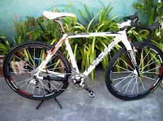 A minha Focus-Ciclocross