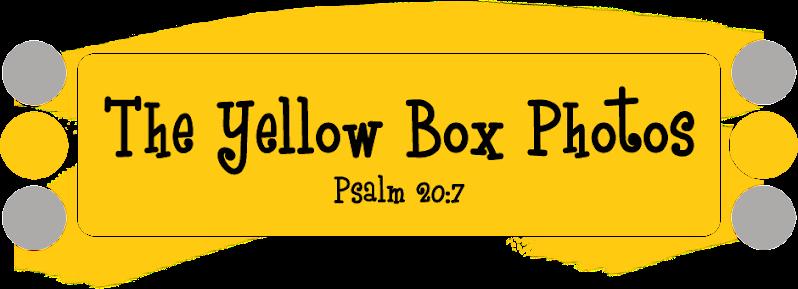 The Yellow Box Photos
