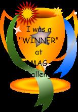 MAG Challenge Blog Winner