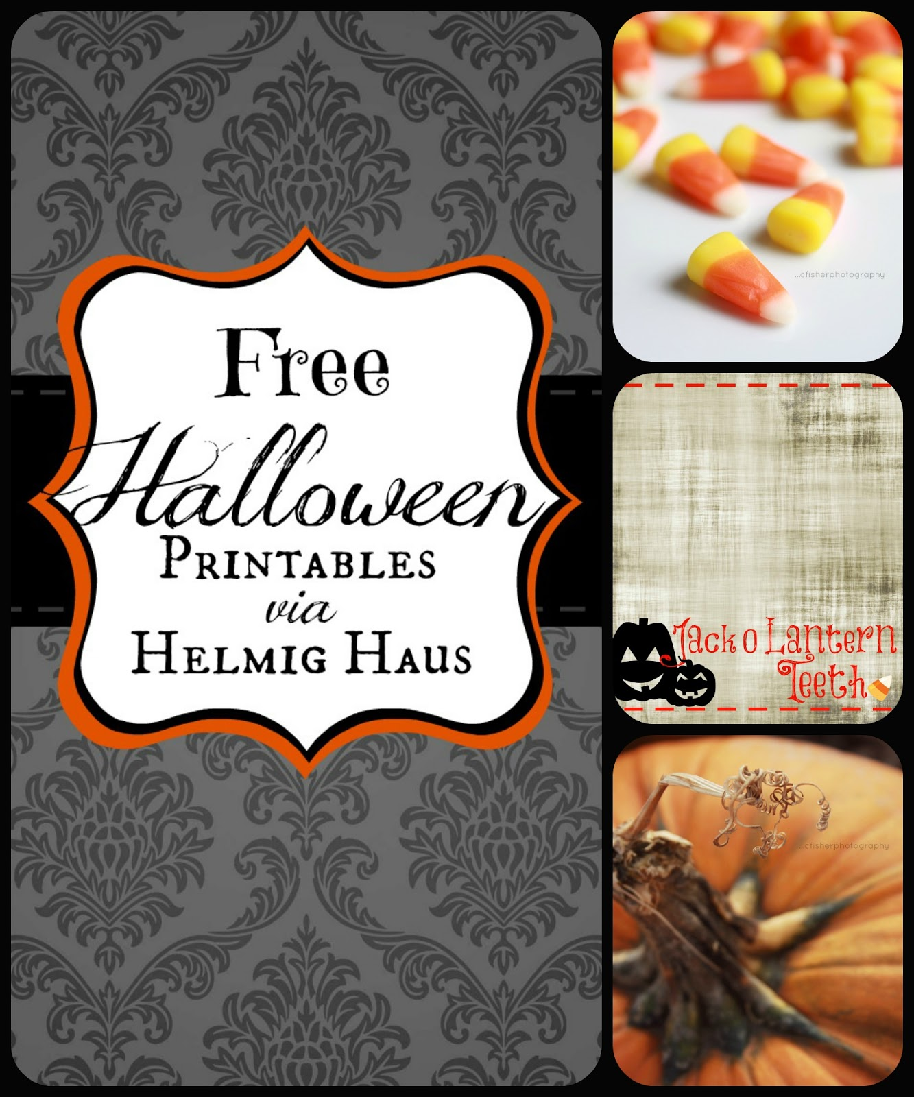 Free Halloween Party Table Labels Free printables to help you decorate for Halloween courtesy of Helmig Haus via http://helmighaus.blogspot.com/