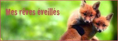 http://mes-reves-eveilles.blogspot.fr/2015/07/enfermes-du-cote-obscur.html