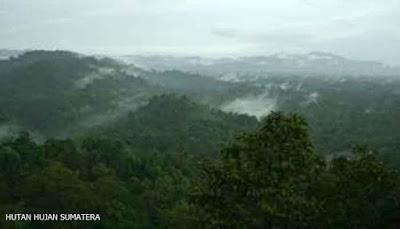 Daftar Situs Warisan  Dunia Indonesia
