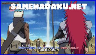 Naruto Shippuden 313 Subtitle Indonesia, Naruto Shippuden EPISODE 313, Naruto Shippuden 313 english Subtitle, Naruto 313 indo, naruto terbaru 313, naruto 313 bahasa indonesia