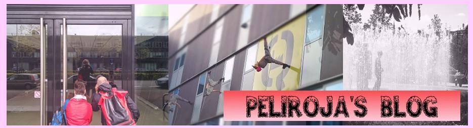Peliroja's Blog