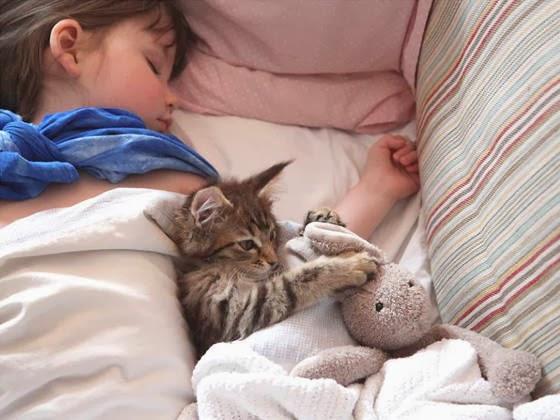 Foto Iris dan Thula tidur bersama