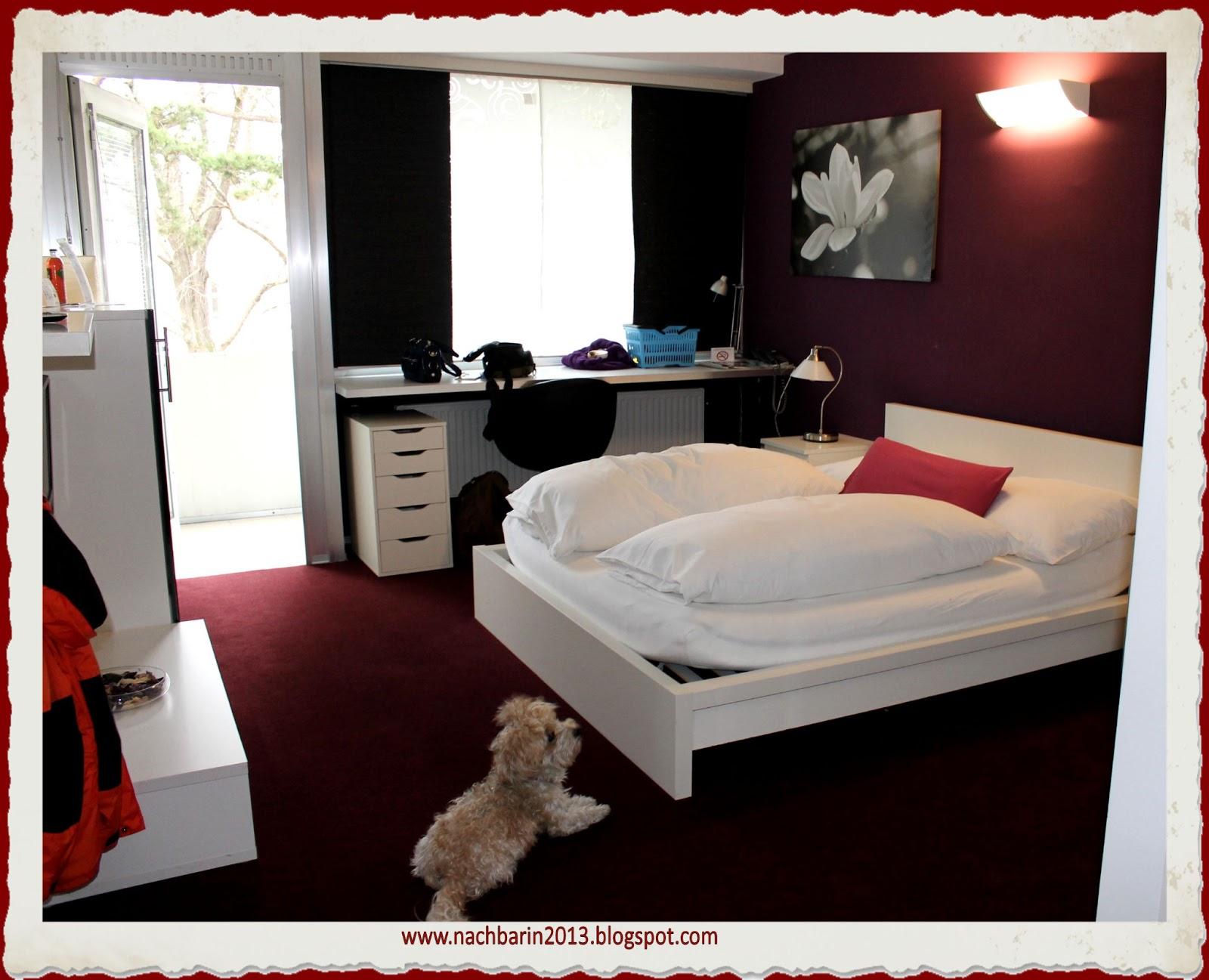 Hotel Mit Hund Am Main Nahe Wurzburg