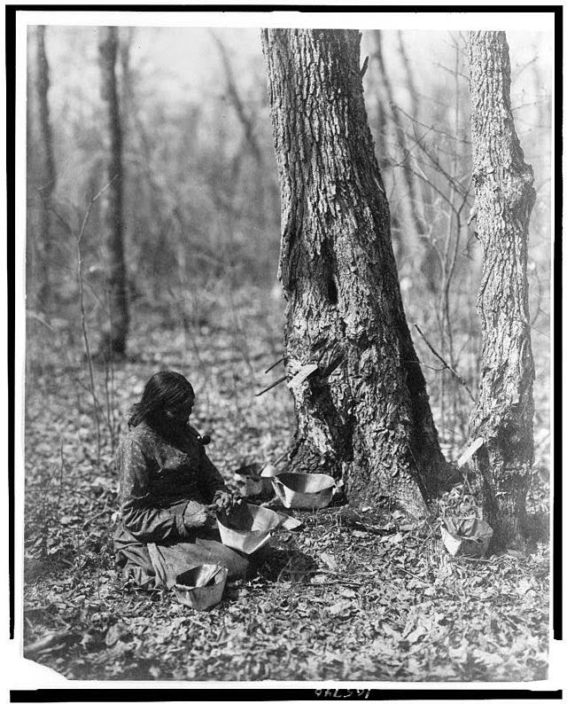 Ojibwe Indian
