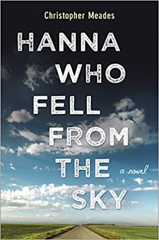 TLC BOOK TOUR REVIEW: Hanna Who Fell From The Sky, Christopher Meades (September/October)