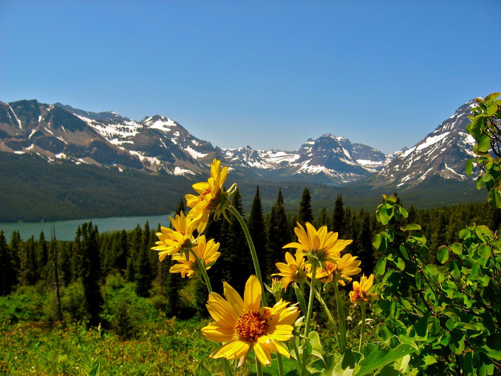 1 Glacier National Park Montana