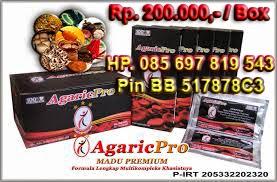 Obat Tradisional AgaricPro