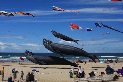 The Lincoln City Kite Festival.