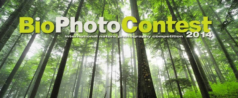 BIO PHOTO CONTEST 2014 BUDOIA (PN)