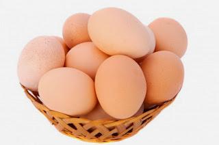 memilih-telur-ayam