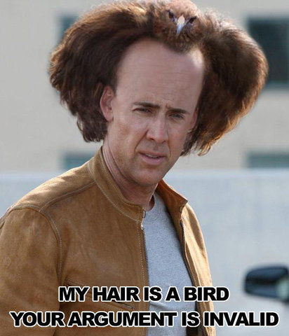 My hair is a bird. Your argument is invalid.