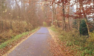 jesienna droga w Szczawnicy