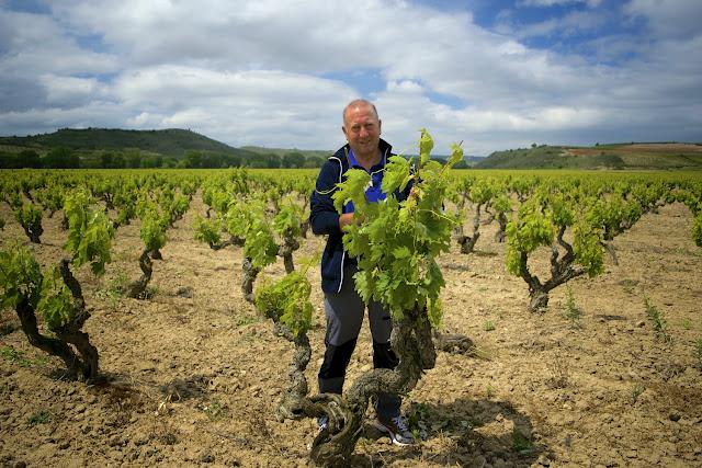 Jose Luis y viñedos prefiloxéricos de Dominio de Berzal