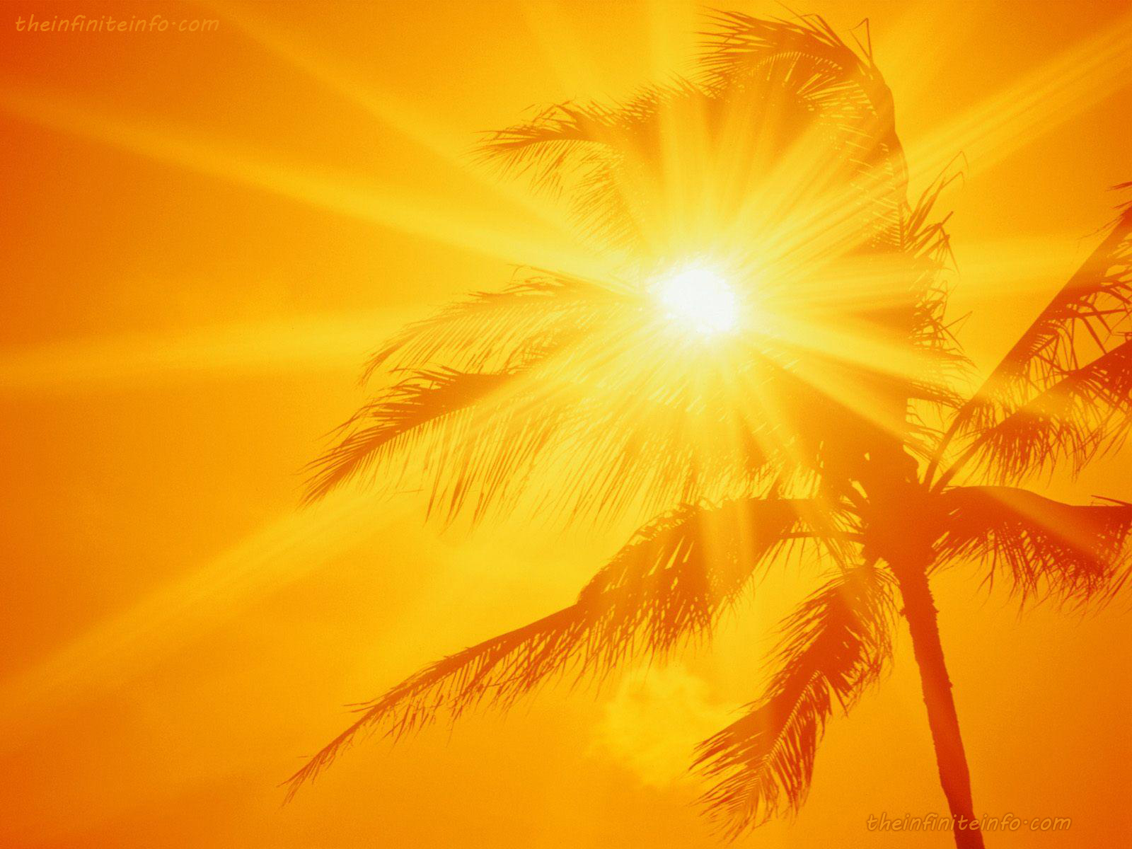 http://2.bp.blogspot.com/-znpoVk3gcEg/T_6QlvCpVXI/AAAAAAAAAtU/Xg-snOKOCjo/s1600/sunshine_yellow_1600x1200.jpg