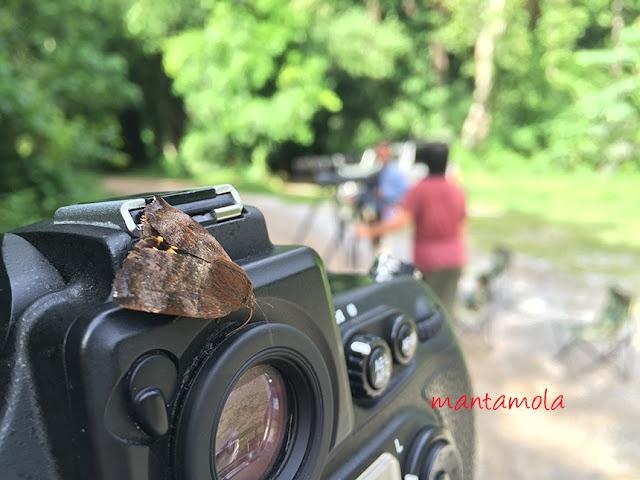 Keang Krachan National Park, Thailand