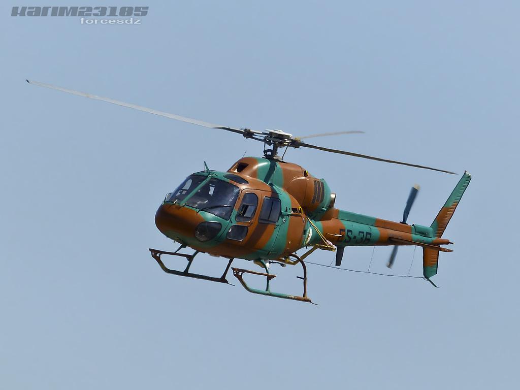 صور مروحيات القوات الجوية الجزائرية Ecureuil/Fennec ] AS-355N2 / AS-555N ] P1060382-2